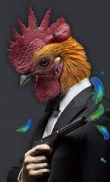 rooster-man-with-gun-pictures-296642